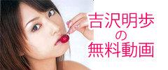 吉沢明歩の無料動画